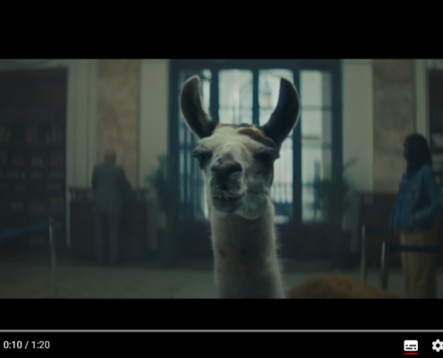 Vidéo du Lama
